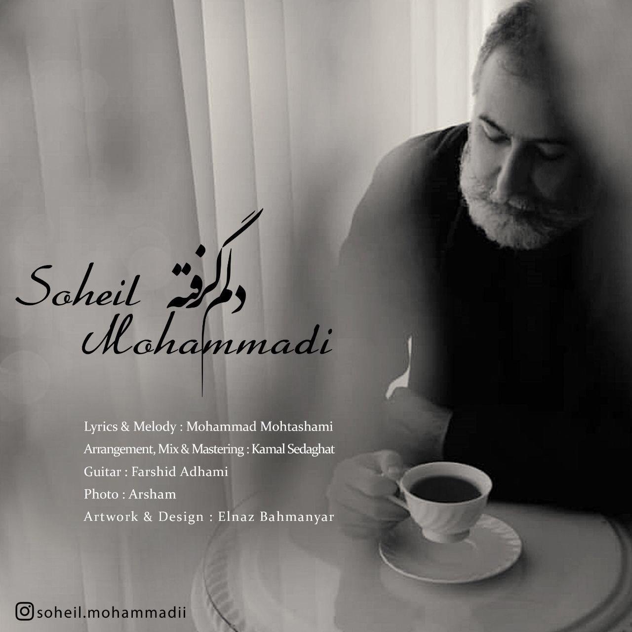Soheil Mohammadi – Delam Gerefte